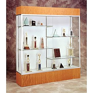 Glass Display Cases To Showcasing Trophy Artifact And