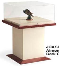 Artefact Display Cases