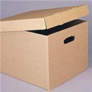 Corrugated Storage Carton PB495-40001
