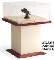 Artifact Display Case with Tower Base